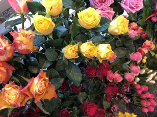 Täglich frische Rosen