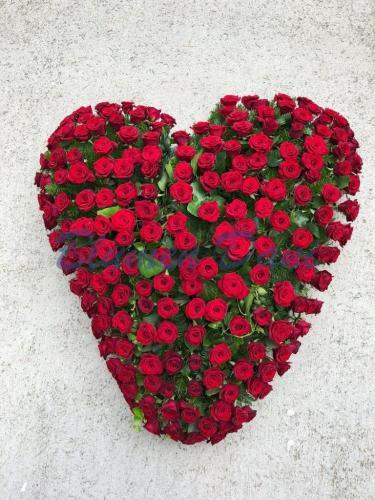 Herz Rosen rot voll