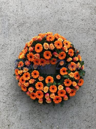 Gerbera - Rosen / orange / voll