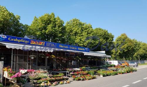 Standort Wundtgasse 1A - 1120 Wien
